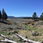 Hiking in Truckee CA – Pics from Dry Lake Trail – April 2015